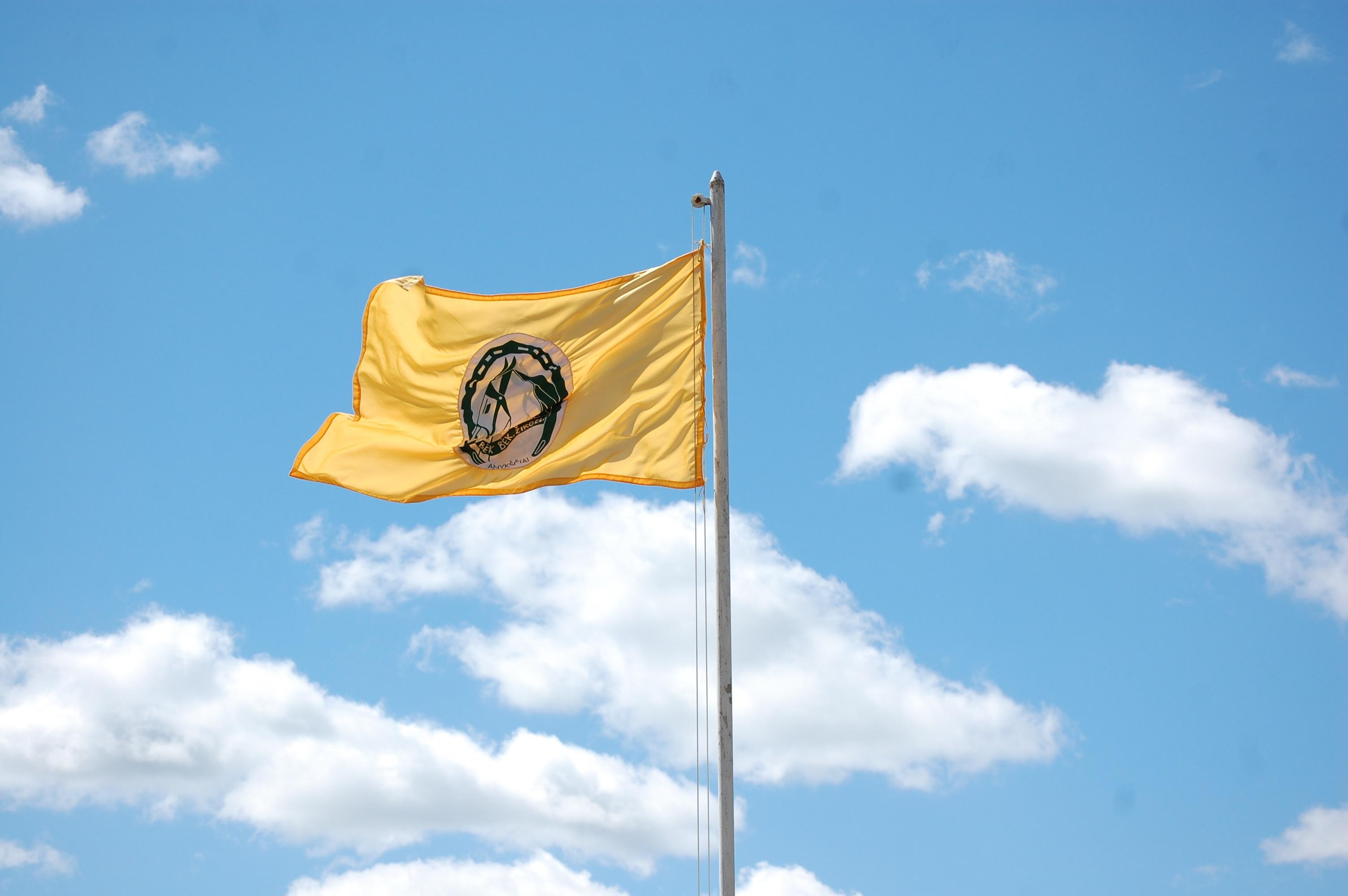 """Šventės """"Bėk bėk, žirgeli! vėliava. Adelės Aglinskaitės nuotrauka."""