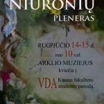 Niūronių plenero plakatas