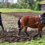 Ūkininkas Vidmantas Banys su Dobilu. M. Karčemarsko nuotr.